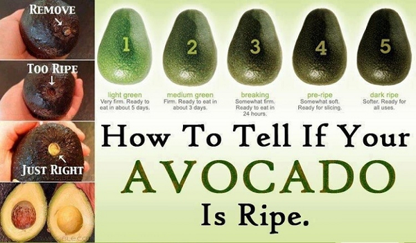 how-to-tell-if-your-avocado-is-ripe_600